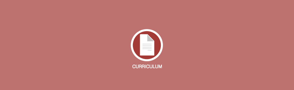 curriculum_EN_980